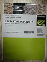 Семена  томата  Белфаст F1 500с, фото 1