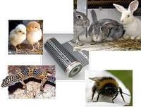Отопление в сельском хозяйстве. Обогрев животных - термопленка XiCA XM-205