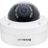 IP-камера Brickcom VD-100Ap купольная, антивандальная с обогревом