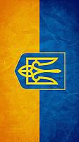 Виниловая наклейка на телефон L Флаг Украины