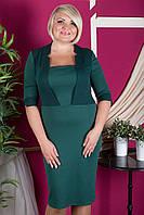 Строгое платье больших размеров, цвета в ассортименте