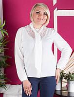 Женская нарядная блузка больших размеров
