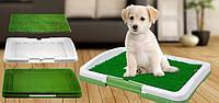 Лоток для собак Puppy Potty Pad MM