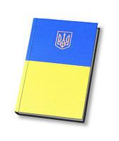 25239 Ежедневник датированный 2017 , CAPYS , желто - голубой  с украинской символикой