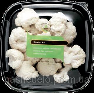 Семена цветной капусты Декстер F1 2500 семян Rijk Zwaan