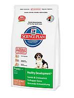 Hills (Хиллс) Puppy - корм для щенков с ягненком и рисом 1 кг