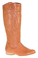 Женские сапоги LEONTYNE, фото 1