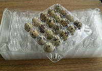 Упаковка для перепелиных на 20 яиц