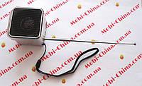 Digital Speaker  Portable Mini FQ#61 (портативное радио+TF), фото 1