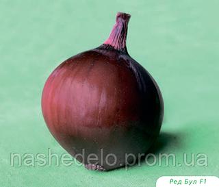 Семена красного лука Ред Булл F1 250000 семян Bejo