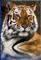 """Алмазная вышивка """"Тигр акварель"""" (техника рисование камнями)"""