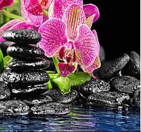 Картина для рисования камнями стразами Diamond painting Алмазная вышивка алмазами мозаика орхидея ilife