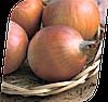 Семена лука Маркет F1 250000 семян Seminis