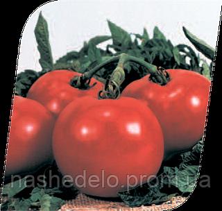 Семена томата Президент II F1 500 семян Seminis