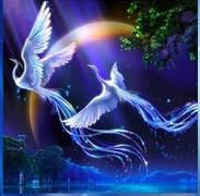 """Алмазная мозаика """"Волшебные птицы"""" (выкладка камнями)"""