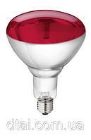 Лампа инфракрасная для обогрева 150 - 250 Вт (Польша)