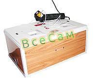 Цифровой инкубатор «Курочка Ряба» ИБ-100 с металлическим каркасом в пластиковом корпусе на 100 яиц + переворот