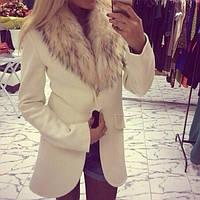 Куртки, ветровки, жилетки (Одесса)