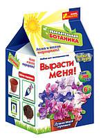 """Увлекательная ботаника """"Базилик(смесь сортов)"""" Ранок"""