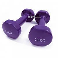 Гантели для фитнеса виниловые 2 шт по 2,5 кг