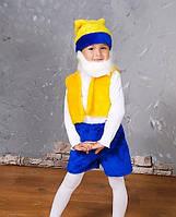 Карнавальные костюм- гном