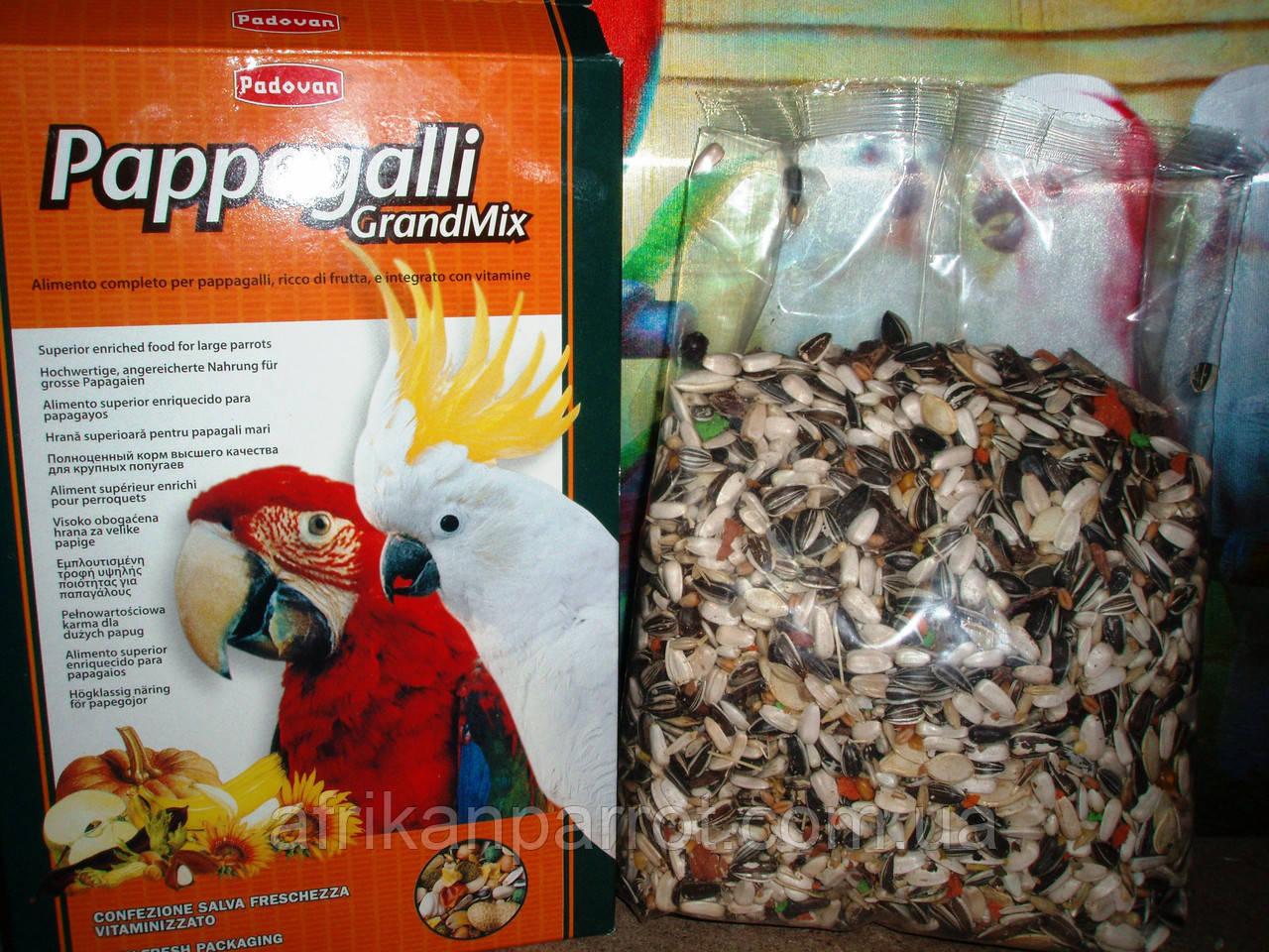 корм для ожереловых попугаев фото