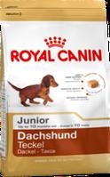 Royal Canin DACHSHUND JUNIOR 1,5кг Корм для щенков породы такса в возрасте до 10 месяцев