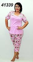 Пижама женская с бриджами хлопок