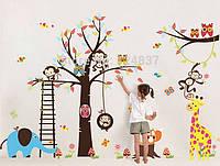 """Наклейка на стену, интерьерные наклейки """"Зоопарк"""" 140см * 235см"""