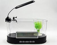 Аквариум-органайзер + часы, термометр USB - прозрачный