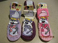 Чешки носки с  кошечками для девочек 13Турция