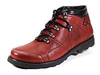 Кожаные мужские вишневые ботинки на меху шнурок, фото 1