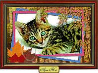 """Схема для вышивки бисером """"Котёнок в рамке"""""""