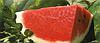 Семена арбуза Астрахан F1 1000 семян Syngenta