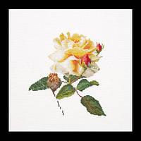 Набор для вышивки крестом 416 Роза (Release) (Теа Гувернер)