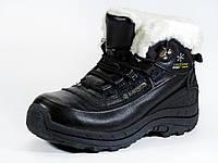 Женские кожаные черные зимние ботинки мех шнурок, фото 1