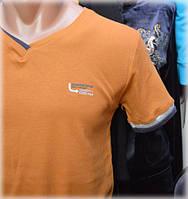 Мужская футболка PETER POLO