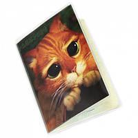 """Обложка на паспорт """"Котик из Шрека"""""""