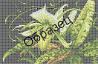 Схема для вышивки бисером «Орхидея»
