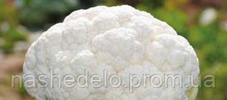 Семена цветной капусты Клаптон F1 2500 семян Syngenta