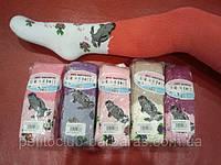 Колготы махровые для девочки Морской котик