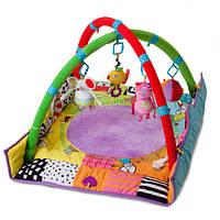 Развивающий музыкальный коврик с дугами - Кошки мышки Taf Toys  (90х90 см)