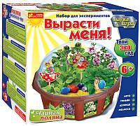 Набор для творчества Твой эко-сад Чайная поляна 0395