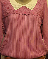 Женская кофта с манжетом с воротником
