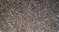 Семена кормовых культур