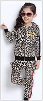 Детский спортивный костюм велюровый унисекс Леопард
