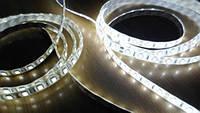 Светодиодная лента 5630 Сверхъяркая Premium, 60 диодов (герметичная), фото 1