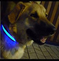 Ошейник светящийся для собак синий