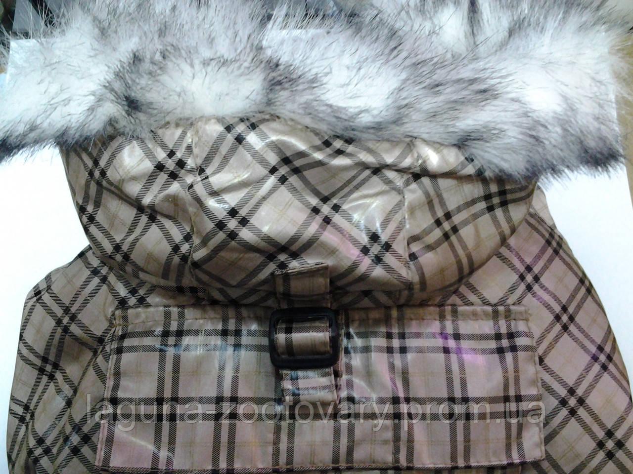 одежда дискавери в нижнем тагиле