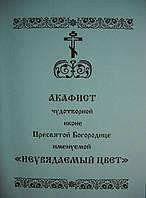 """Акафист иконе Богородице """"Неувядаемый цвет"""""""